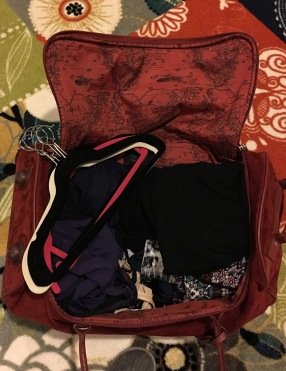 One suitcase, complete with hangers.
